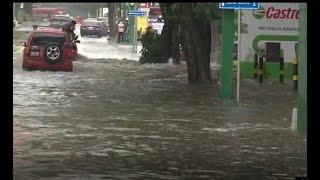 Las lluvias dejaron árboles, vallas publicitarias caídas e inundaciones