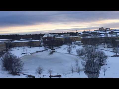 Winter Solstice at Umeå University