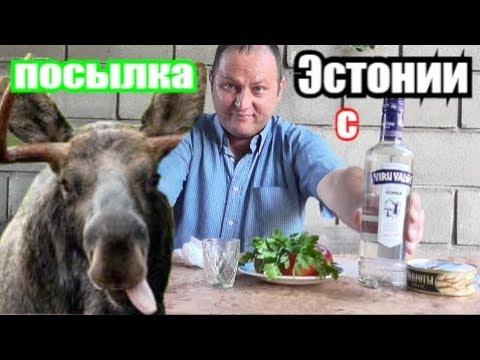 Пью ВОДКУ с мЯсом  ЛОСЯ, шоб хорошо ПИЛОСЯ... photo