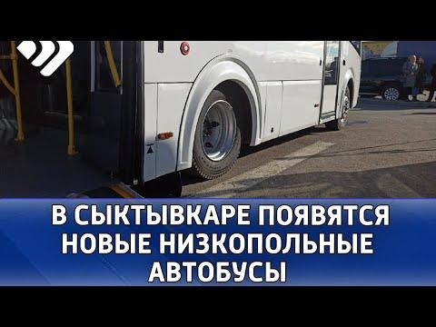 С 1 сентября на сыктывкарских маршрутах № 6, 7 и 20 начнут курсировать  низкопольные автобусы