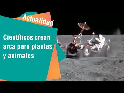 Científicos planean llevar animales y plantas a la luna