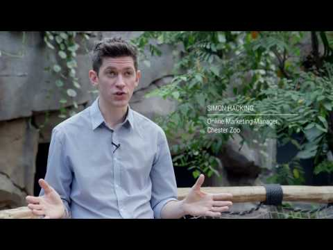 Chester Zoo - Mobile Device vs. Mobile Consumer