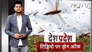 Desh Pradesh: Drone-Helicopter से टिड्डियों पर वार - NDTVINDIA
