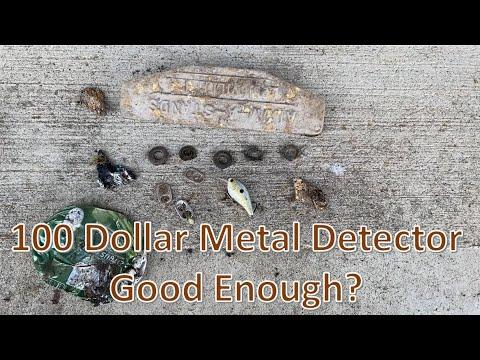 100 Dollar Metal Detector Good enough?