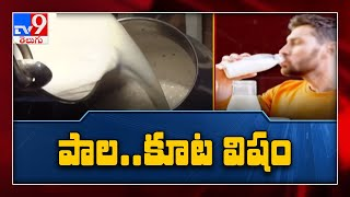 చిత్తూరు జిల్లాలో కల్తీ పాల దందా - TV9 - TV9