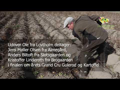 Odsherred Grand Cru-finalist: Ole Nielsen (Lovtholm)