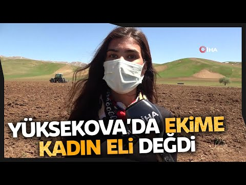Yüksekova'da Ekime Kadın Eli Değdi