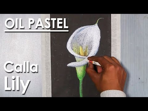 How to Draw Calla Lily in Oil Pastel step by step
