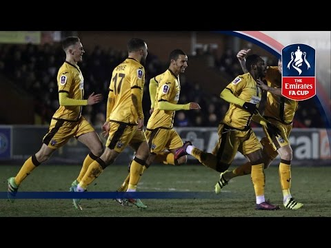 Best Goals - 3rd Round Emirates FA Cup 2016/17 | Top Five