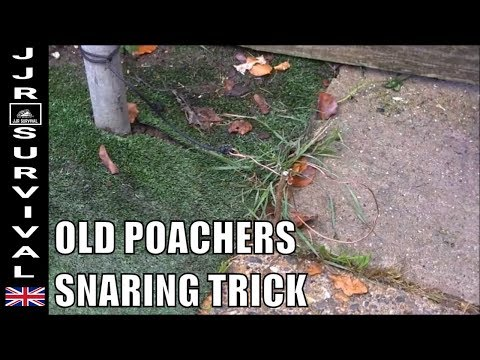 Old Poachers Snaring Trick