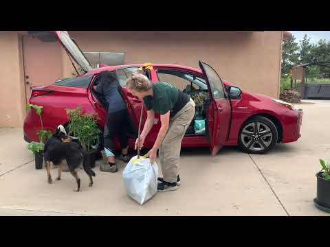 WATCH how we DID it! Packing the Prius