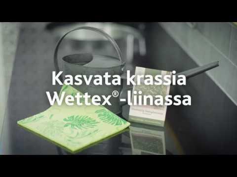 Kasvata krassia Wettex-liinassa