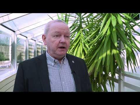 Läget efter att Umeå universitet stängt sina lokaler