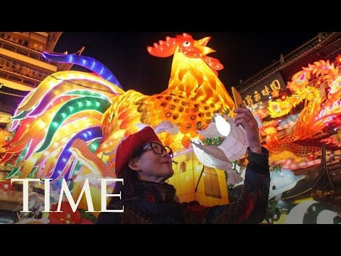 The Year Of The Rooster: Things You Didn't Know   TIME