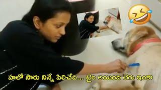 Anchor Suma Making Hilarious Fun With Her Dog | Suma Kanakala | Funny Videos | Rajshri Telugu - RAJSHRITELUGU