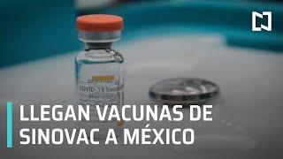 Llegan vacunas chinas de Sinovac a México - Sábados de Foro