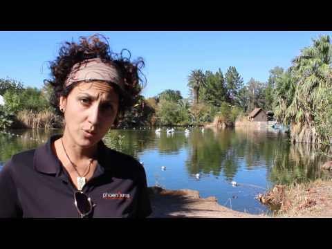 Horticulture Tip of the Month: Water Conservation