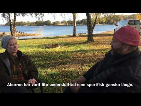 Fiskedestination Ronneby