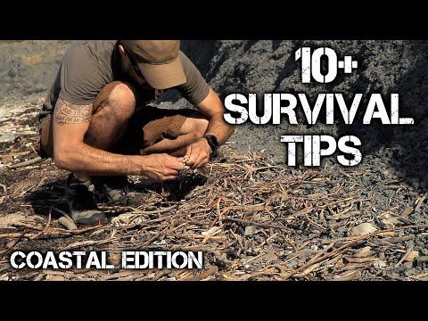 10 Wilderness Survival Tips: Ocean Survival, Coastal Foraging, Wild Edibles