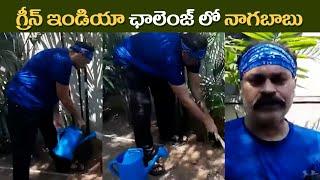 Mega Brother Nagababu Accept Green India Challenge | గ్రీన్ ఇండియా ఛాలెంజ్ లో నాగబాబు | IG Telugu - IGTELUGU