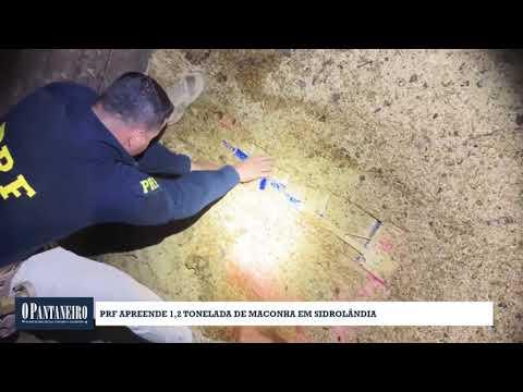 PRF apreende 1,2 tonelada de maconha em Sidrolândia