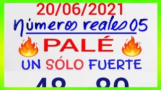 NÚMEROS PARA HOY 20/06/21 DE JUNIO PARA TODAS LAS LOTERÍAS...!! Números reales 05 para hoy....!!