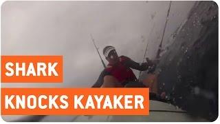 Shark Ruins Kayaking Trip | Kayak Attack