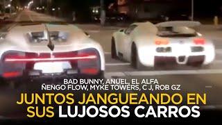 Imágenes del jangueo de Bad Bunny, El Alfa, Anuel, Myke Towers, Ñengo Flow juntos por Miami ????