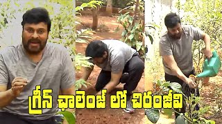 Megastar Chiranjeevi Accepts Green Challenge | గ్రీన్ ఛాలెంజ్ లో చిరంజీవి | IG Telugu - IGTELUGU