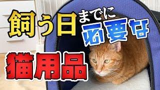 子猫 必要なもの『初めて猫を飼う時、迎え入れるための準備に必要なもの (家に来る当日までに必要なグッズ) [4K]』などなど