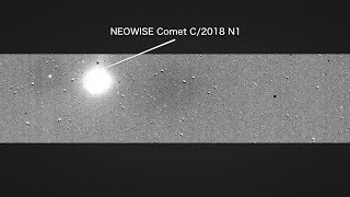 NASA's TESS Catches a Comet