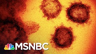Test Backlogs And Hospitals Nearly Full In States Where COVID-19 Surges   The 11th Hour   MSNBC