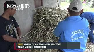 Productores de Boaco reciben bono de pasto y fertilizante de parte del IPSA - Nicaragua