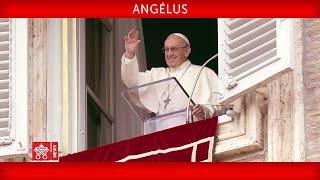 Angélus 26 juillet 2020 Pape François