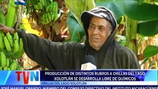 PRODUCCIÓN DE DISTINTOS RUBROS A ORILLAS DEL LAGO XOLOTLÁN SE DESARROLLA LIBRE DE QUÍMICOS