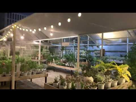 ธรรมชาติในกรุงเทพ.-สวนผัก-สวนต