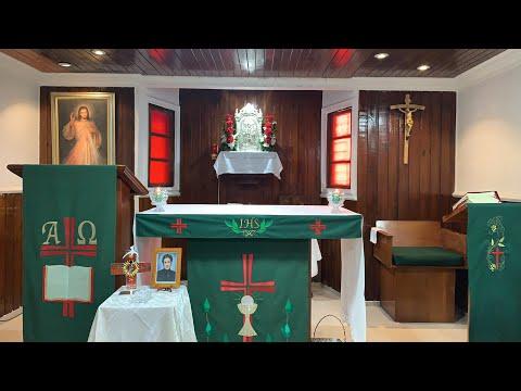 Domingo de la XVII semana del Tiempo Ordinario - Padre Teófilo Rodríguez