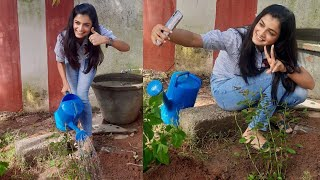 Actress Hemal Ingle Accepts Green India Challenge | TFPC - TFPC