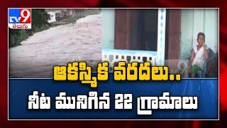 Brahmaputra water level rising, parts of Kaziranga inundated - TV9 - TV9