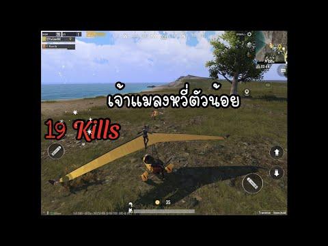 เจ้าแมลงหวี่ตัวน้อย-19-Kills-P