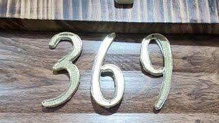 369.DE TESLA GATICO VIP#1  06.01.2021