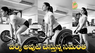 Actress Samantha Latest Workout Video | Samantha Akkineni Heavy Gym Workout | IndiaGlitz Telugu - IGTELUGU