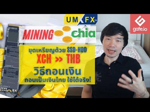 ขุดเหรียญ-Chia-วิธีถอนเงิน-เป็