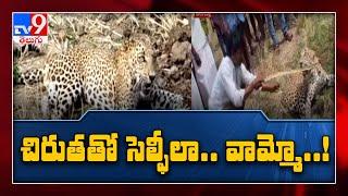 Mahbubnagar : బురుగుపల్లిలో చిరుత - TV9 - TV9