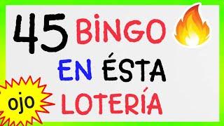 NÚMEROS GANADORES...!! (( 45 )) BINGO HOY/ Loteria NEW YORK/ RESULTADO de las LOTERÍAS/ SORTEOS HOY