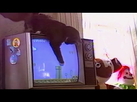 connectYoutube - BEST of 90s ANIMALS and KIDS FAILS - 90's KIDS will understand