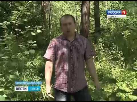Томичи хотят восстановить маршрут Ивана Петлина