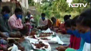Rang De ने Andhra Pradesh के इमली किसानों तक पहुंचाई मदद - NDTVINDIA