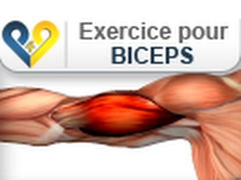 download youtube mp3 gymnastique programme de musculation pour pompes pectoraux. Black Bedroom Furniture Sets. Home Design Ideas