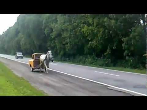 Auto hybrydowe dla każdego